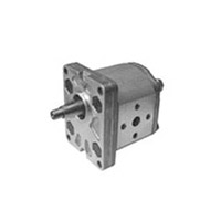 1P - External gears pumps